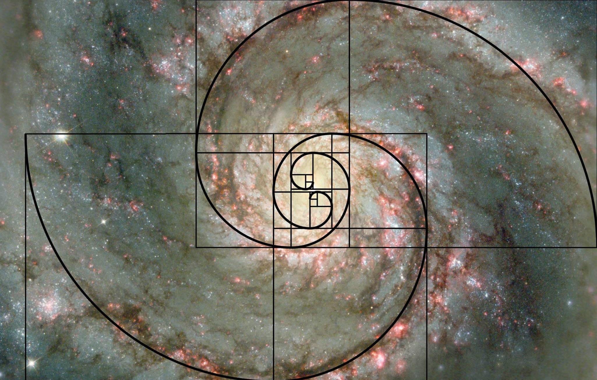 Prof. Természet: Földünk matematikusa – az aranyarány